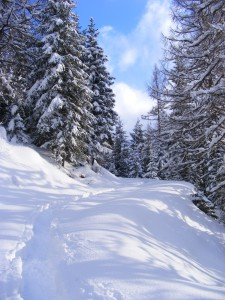 risalita-sci-alpinismo-neve